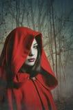 Donkerrode vrouw met een kap in een nevelig bos stock foto