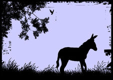 Donkey. Vector silhouette of a lonely donkey Stock Photography