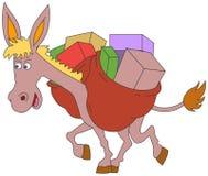 Donkey Stock Image