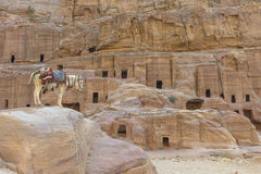 Donkey by the Ancient houses in Petra Stock Photo