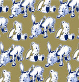 Donkey bear background Stock Photo