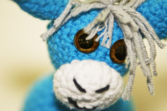 Donkey blue Royalty Free Stock Photography