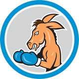 Donkey Boxing Side View Circle Cartoon Royalty Free Stock Photo