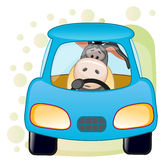 Donkey in a car Stock Photography