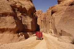 DOnkey carriage in Petra stock image