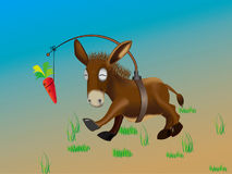 Donkey and carrot. Donkey pursuing a carrot but never catch it Royalty Free Stock Image