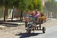 Donkey Cart Royalty Free Stock Photos