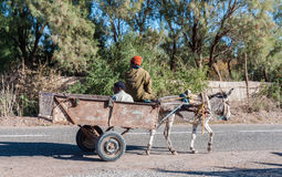 Donkey cart in Morocco Stock Photo