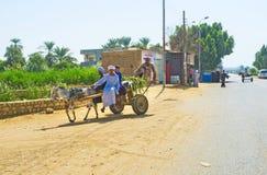 The donkey cart stock image