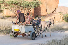 Donkey cart Stock Photography