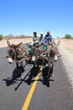 Donkey Cart Royalty Free Stock Photo