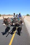 Donkey Cart royalty free stock photo