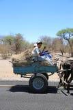 Donkey Cart stock images