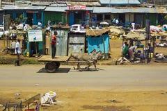 Donkey cart Royalty Free Stock Images