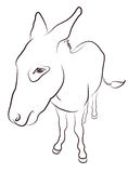 Donkey. Contour Silhouette isolated on white Royalty Free Stock Photography