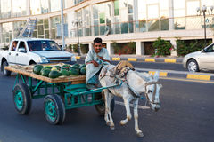The donkey-drawn cart Royalty Free Stock Images
