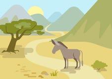 Donkey flat design cartoon vector wild animals. Donkey in the mountains habitat flat design cartoon vector farm wild animals. Flat zoo nature children collection Vector Illustration