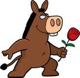 Donkey Flower Royalty Free Stock Photography