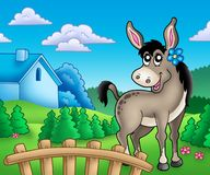 Donkey with flower behind fence Stock Images