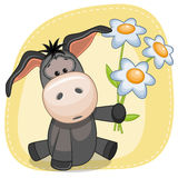 Donkey with flowers Stock Images
