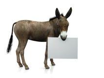 Donkey holding sign Royalty Free Stock Photos