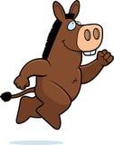 Donkey jumping Stock Images