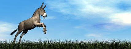 Donkey jumping - 3D render Stock Image
