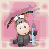 Donkey nurse Stock Photos