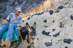 A donkey and his owner in Santorini. royalty free stock photography