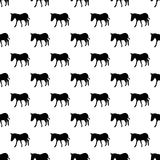Donkey pattern seamless Stock Image