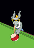 Donkey playing snooker. Tough donkey with the sunglasses playing snooker Stock Photography