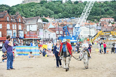 Donkey ride at Scarborough Royalty Free Stock Image
