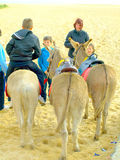 Donkey Rides. Royalty Free Stock Photos