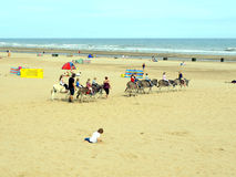 Donkey rides on Mablethorpe beach. Royalty Free Stock Photo