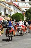 Donkey rides, Mijas. Stock Photo