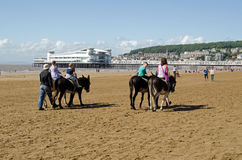 Donkey Riding at Weston-Super-Mare Stock Photo