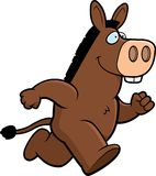 Donkey Running Royalty Free Stock Images