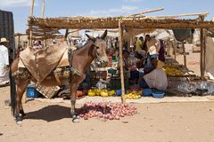 Donkey at the rural market Royalty Free Stock Images