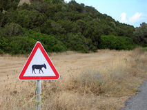 Donkey Sign in Karpaz Stock Photography