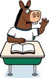 Donkey Student Royalty Free Stock Photo