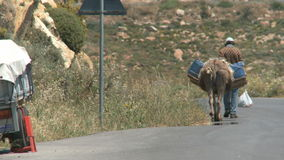 Donkey transport Stock Photo