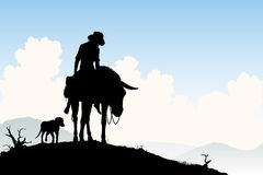Donkey traveler Stock Photos