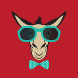 Donkey wearing blue glasses. Royalty Free Stock Photo