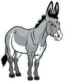 Donkey on white Royalty Free Stock Image