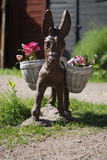 Donkey. In the yard. Summer Stock Image