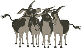 Donkeys. Group of cheerful donkeys over white - vector illustration Stock Photography