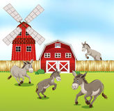 Donkeys in the farmyard. Illustration Stock Photo