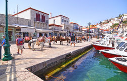 Donkeys the means of transport at Hydra island Saronic Gulf Greece Royalty Free Stock Image
