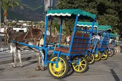 Donkeys in Mijas. Andalusia, Spain. Royalty Free Stock Photos