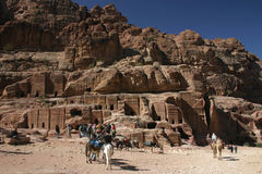 Donkeys in Petra Royalty Free Stock Photo